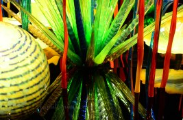 chihuly-11a