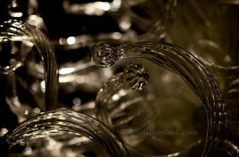 chihuly-24a