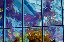 chihuly-29a