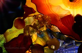 chihuly-6a