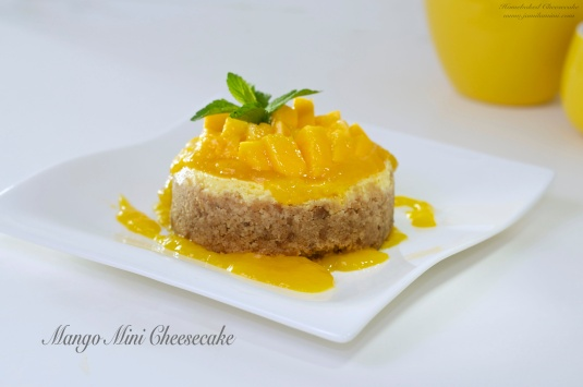 Mango Mini Cheesecake