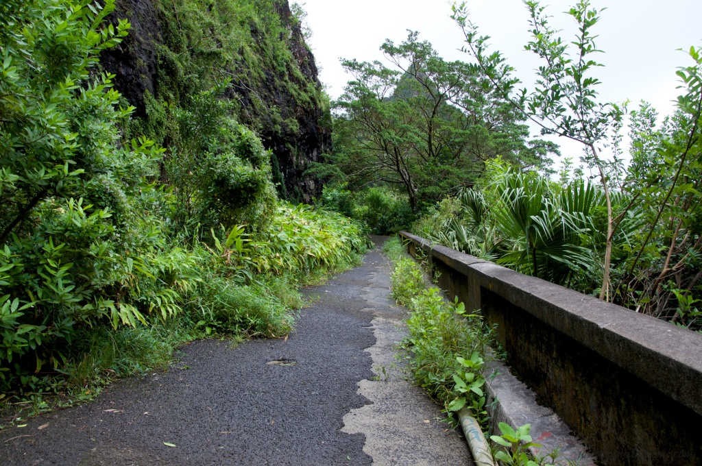 remains of the pali road